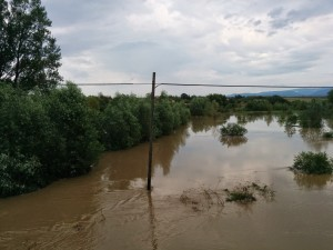 inundatii_greoni