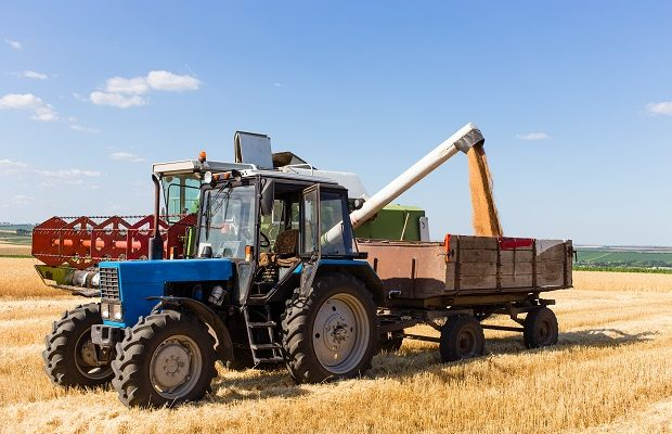 harvest machine loading seeds in to trailer.