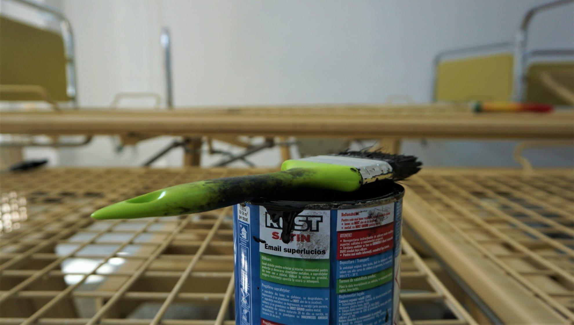 pensula vopsit