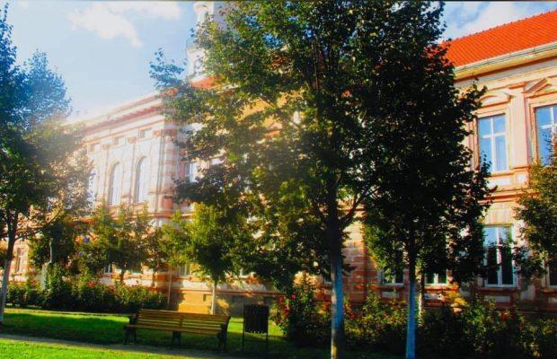 scoala sannicolau