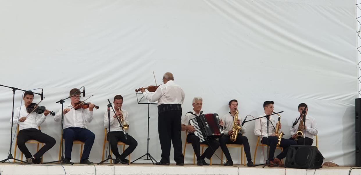 orchestra doina