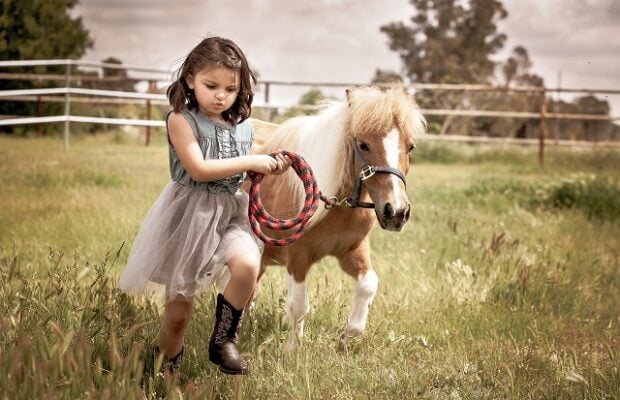 best friends a girl and her pony getting exercise mvggav5
