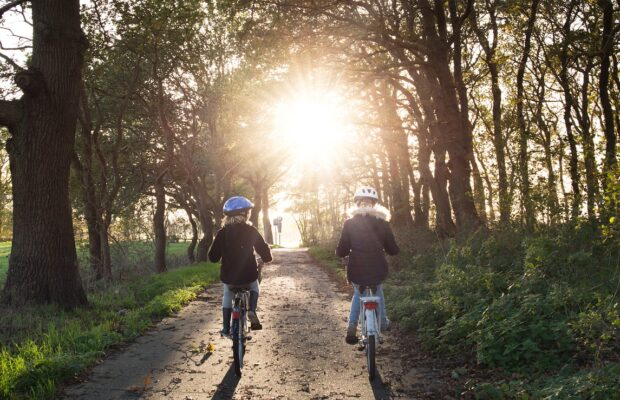 pista bicicleta padure