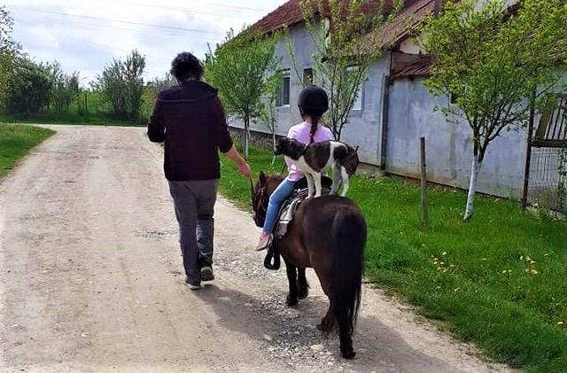ponei ada (2)