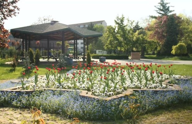 parc botanic foto 2