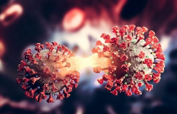coronavirus varianta delta1