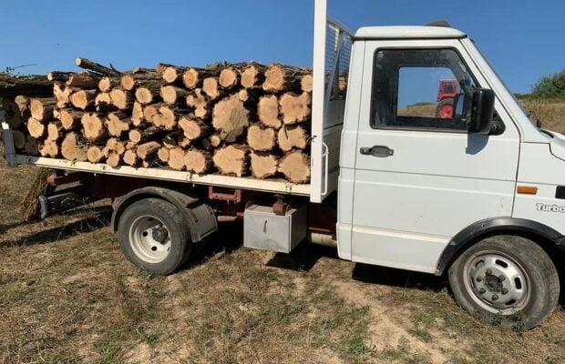 lemne scoala
