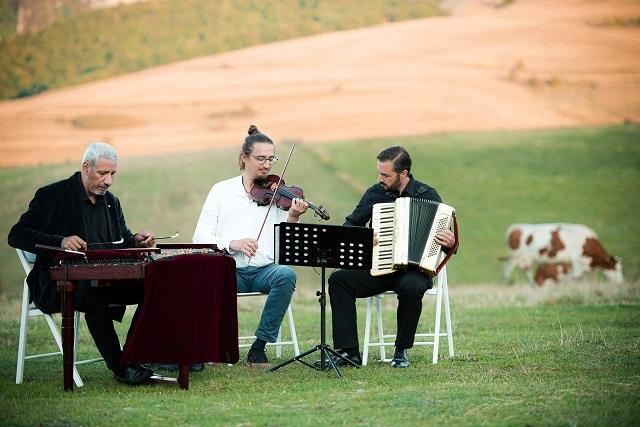 muzica in natura
