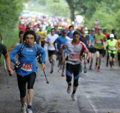 hercules maraton2