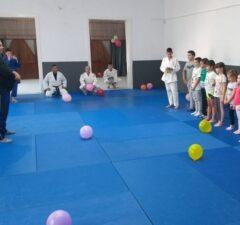 judo lugoj
